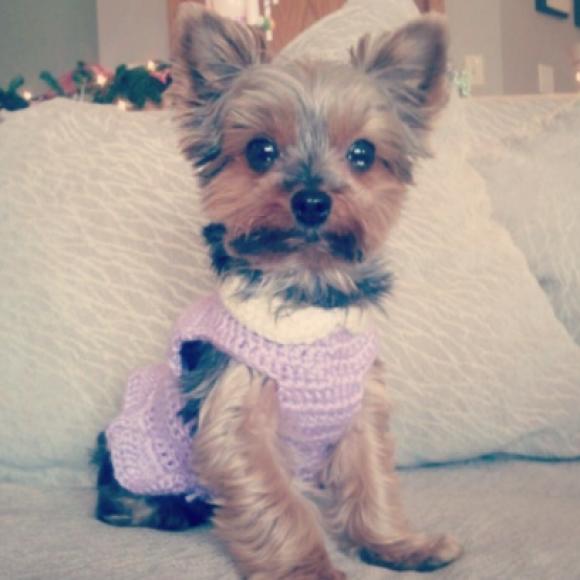 Profile picture of Sadie