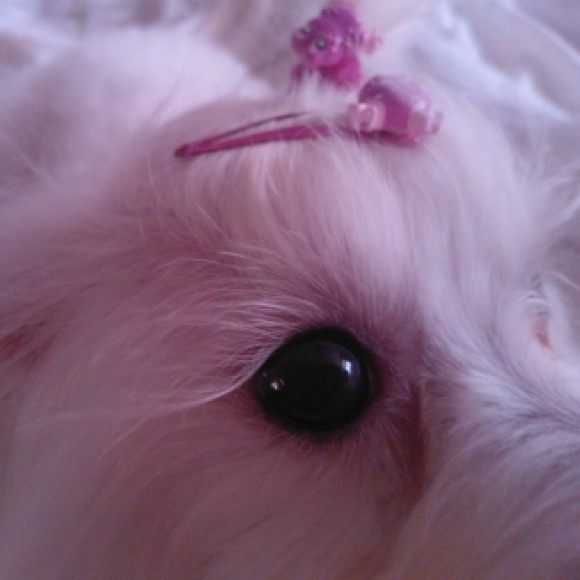 Profile picture of Maggy