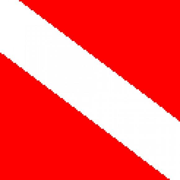 Group logo of Scuba Divers